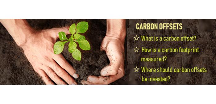 Dig Deeper Carbon Offset Header