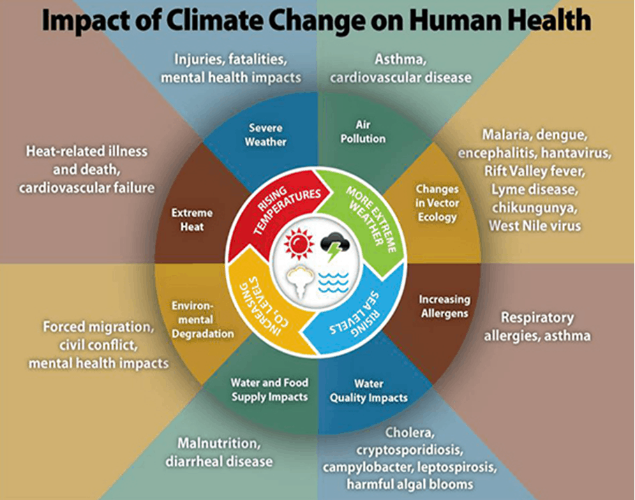 CDC diagram: Climate change and human health